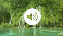 Breathe Move Be - FREE Relaxation Audio